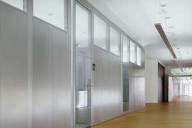 Teilglaselement mit Oberlicht und Tanzglastür (Trennwände, Trennwand, Teilglas, Teilverglast)
